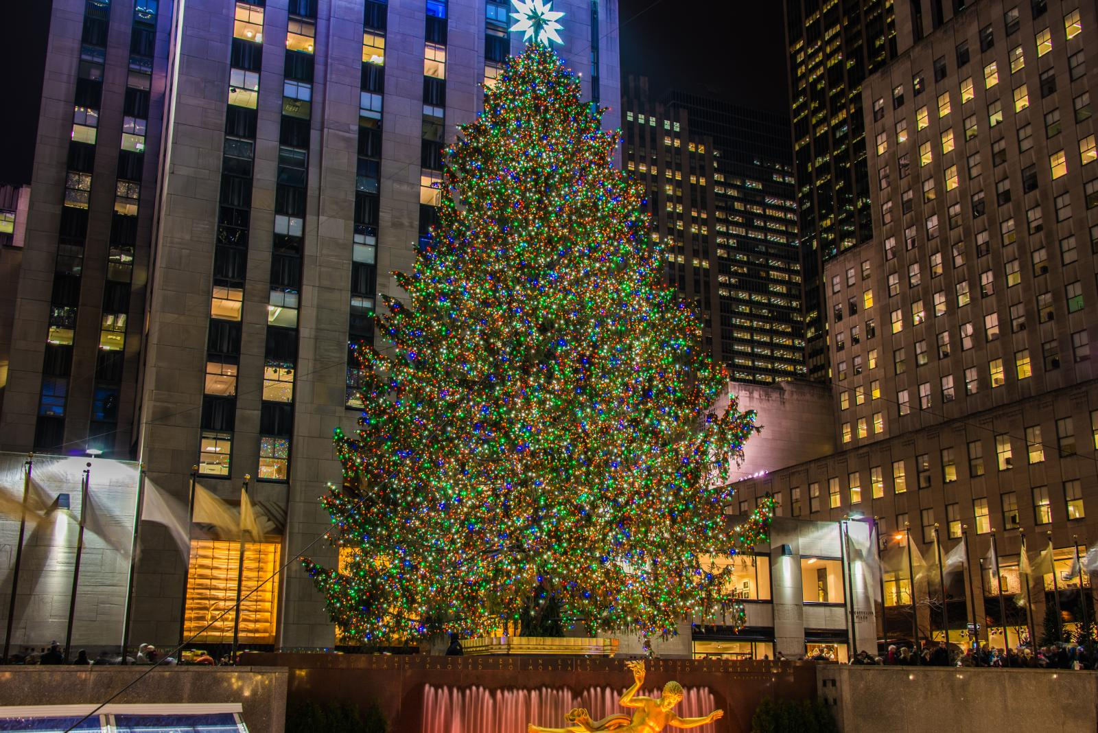 The Rockefeller Christmas Tree 2016-17 | Top 10 Facts