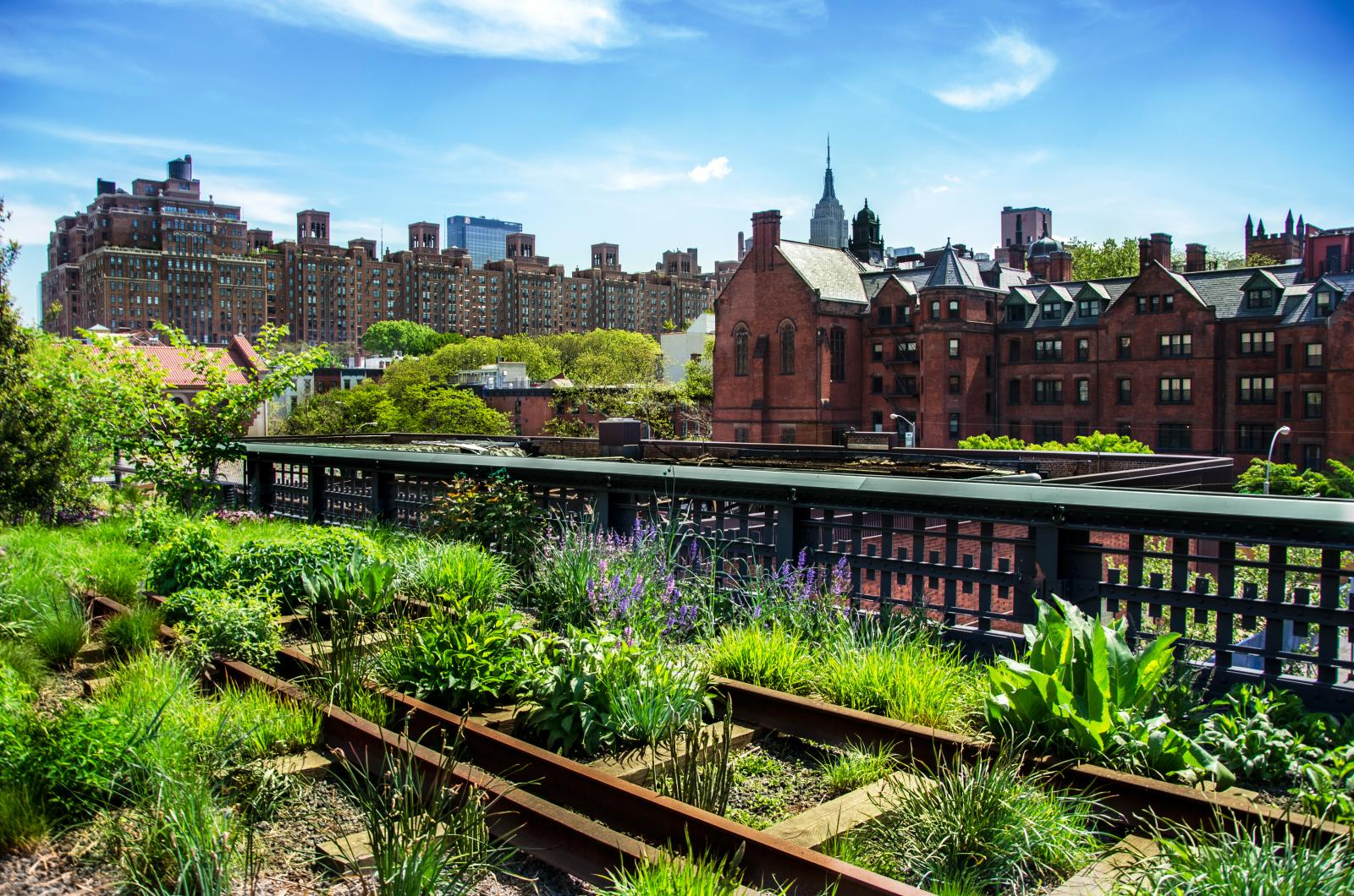 Top 10 FREE things to do NYC High Line Park