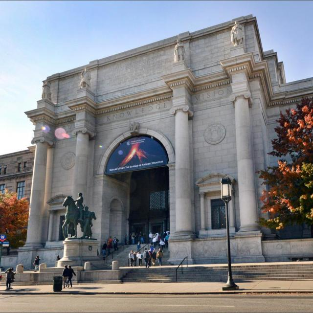 5 Highlights of Museum of Natural History