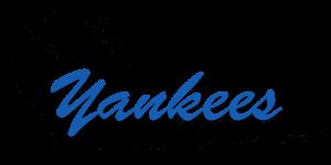 baseball_yankees-small