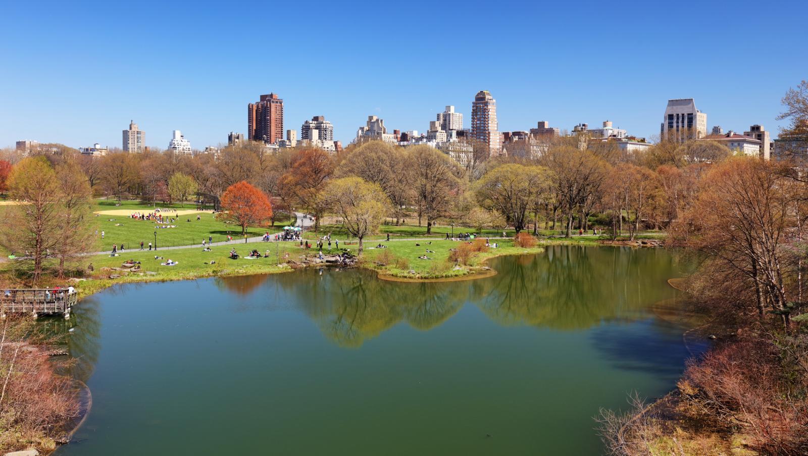 Turtle Pond at Central Park
