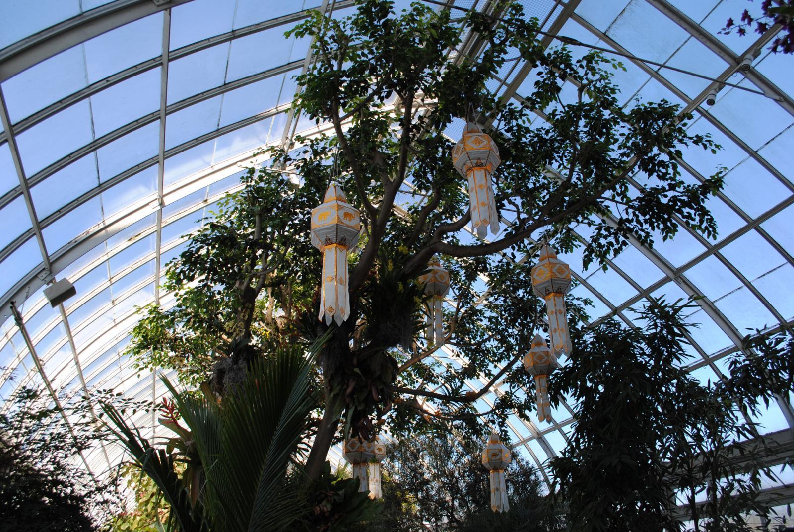 New York Botanical Garden Bronx