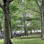 Things to Do in Battery Park