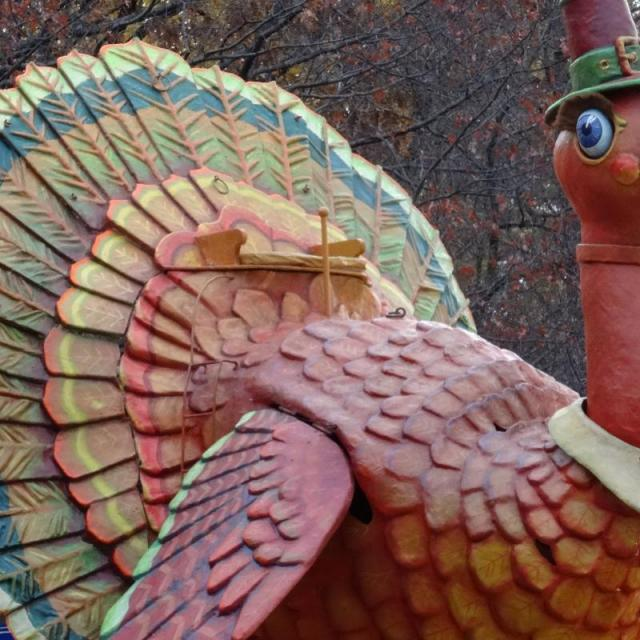 Things to do on Thanksgiving in New York