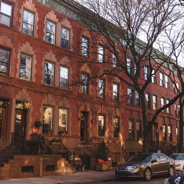 Things To Do in Harlem