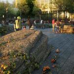 The 9/11 Memorial Glade