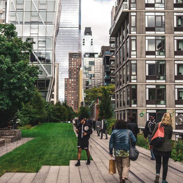The 25 Best Things to do Along the High Line
