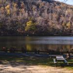 Day Trip: All-day Cruise to Bear Mountain