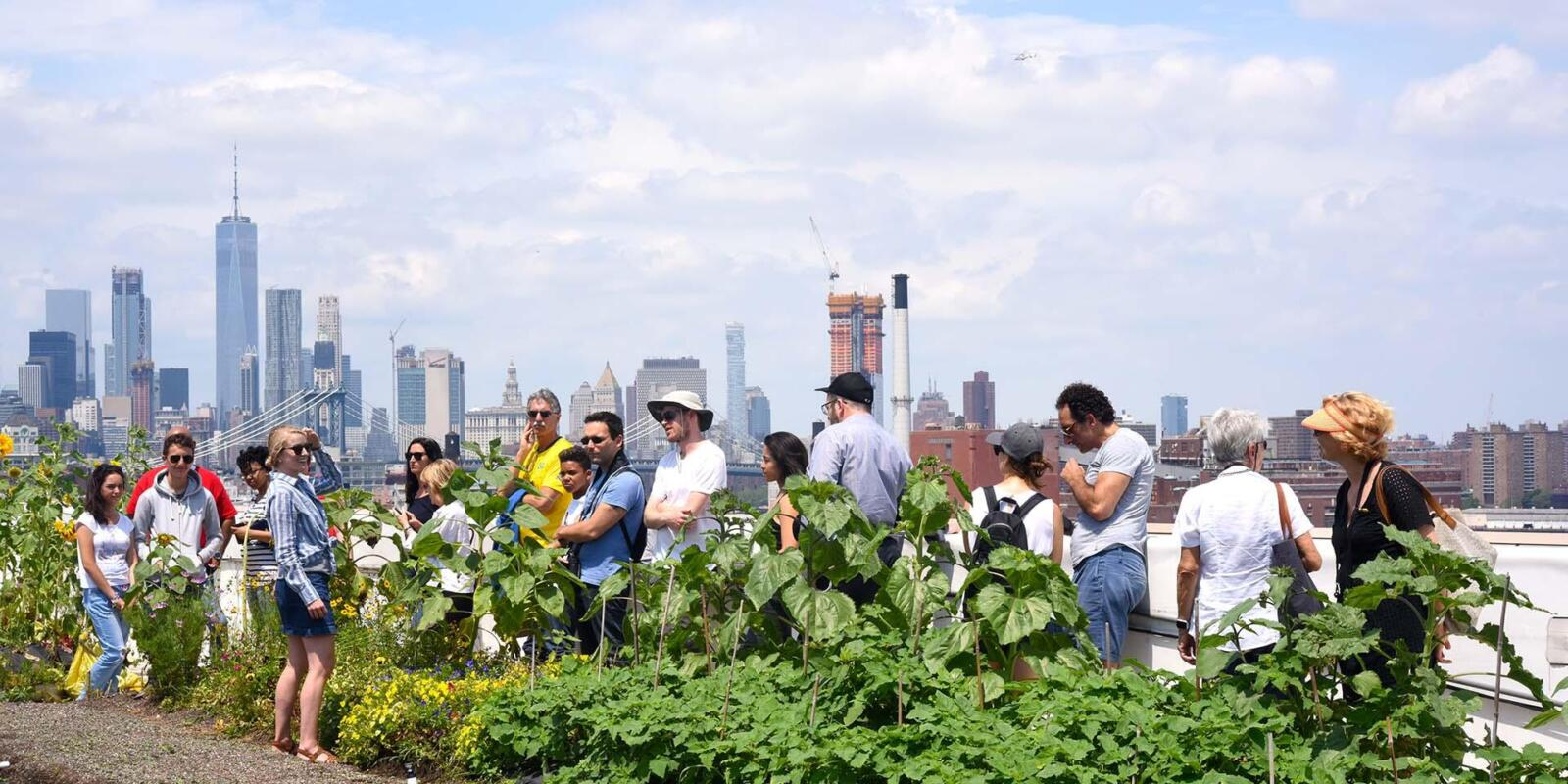 Things to do in New York in August: Rooftop Red