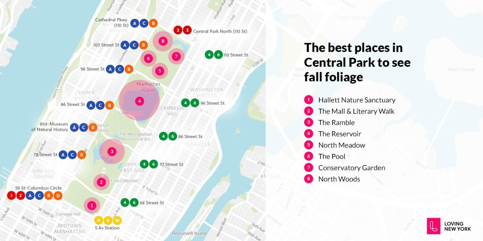 Los mejores lugares en Central Park para ver el follaje de otoño